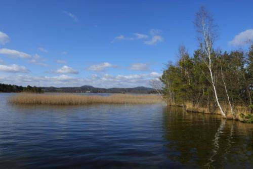 Kemp u Jezera na Máchově jezeže v Doksech